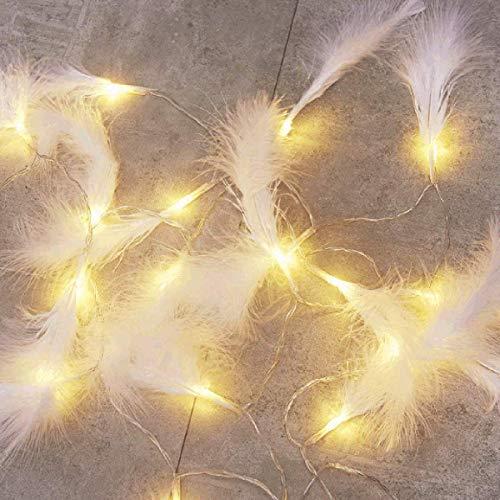 Zunbo - Guirnalda luminosa con plumas artificiales luminosas, guirnaldas de luz blanca cálida para decoración de paredes interiores y exteriores, 3 m, 20 ledes (blanco)
