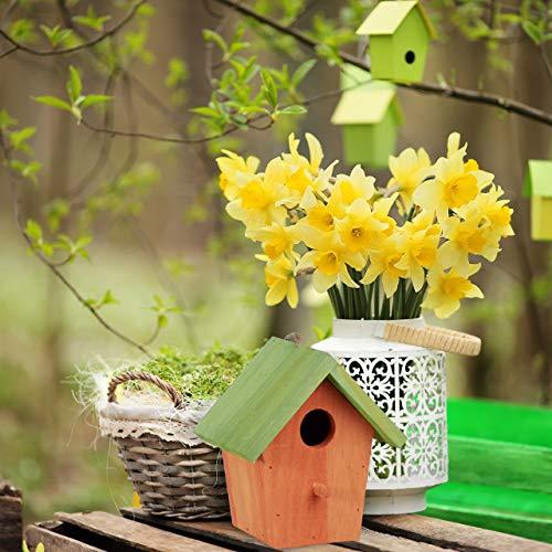 Relaxdays Deko Vogelhaus bunt, aus Holz, Kleines Vogelhäuschen, Frühlingsdeko zum Aufhängen, HBT: ca. 16 x 15 x 8 cm, grün - 2