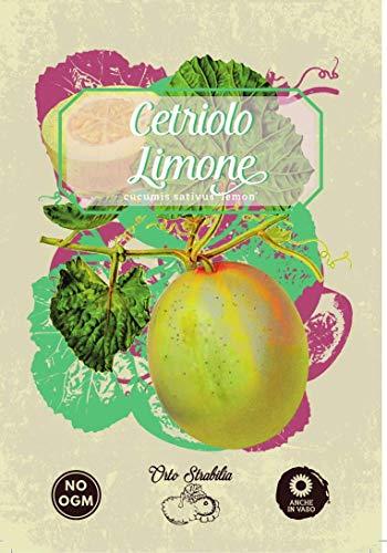 cetriolo limone,cucumis sativus lemon,gr 1,semi rari,semi strani, orto strabilia