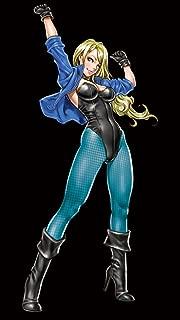 Kotobukiya DC Comics Black Canary Bishoujo Limited Edition Statue
