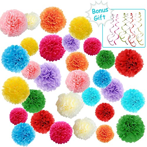 Tissue Paper Pom Poms - Paper Flower Decor for Wedding Birthday Birdal Baby Showers Mexican Fiesta Party - 6 8 10 inch - 10 Mixed Colors - Hanging Swirl Decorations (Total 44 Pcs)