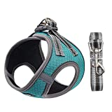 Dog and Cat Universal Harness with Leash - Cat Harness Escape Proof - Adjustable Reflective Step in Dog Harness for Small Dogs Medium Dogs - Soft Mesh Comfort Fit No Pull No Choke (S, Lake Blue)