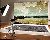 Paisaje de vinilo de 10 x 8 pies, paisaje isleño cerca del océano con nubes, piedras de charco sombrío, fondo de fotos para bebé, cumpleaños, boda, estudio, fotografía.