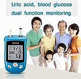 WYZXR Dos en uno 100 Tiras reactivas Glucómetro Monitor Tester de ácido úrico, Solución para el Control de la Diabetes