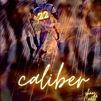22. Caliber
