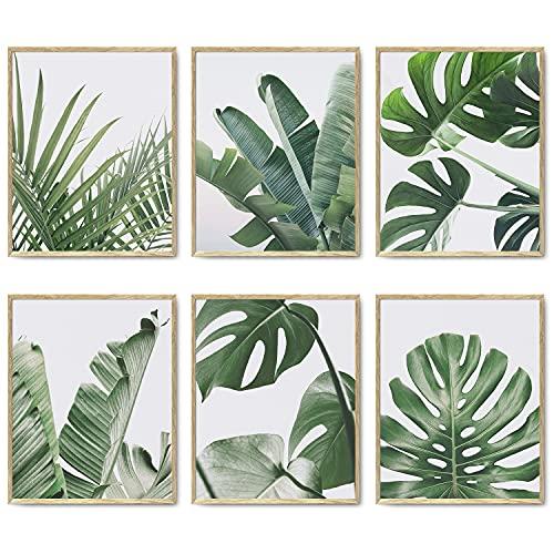 Botanical Wall Art Prints Set von 6 tropischen Blättern, Dekor, Pflanzenblatt, Wandkunst, Leinwanddrucke, Wanddekoration, grüne Wandkunst, Poster-Set für Wohnzimmer, Dekor (20,3 x 25,4 cm, ungerahmt