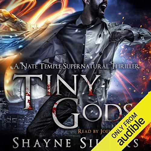 Tiny Gods audiobook cover art