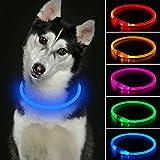 Collar de perro LED recargable con USB, de poliuretano termoplástico, resistente al agua, para perros pequeños, medianos y grandes (azul)