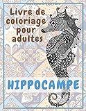 Hippocampe - Livre de coloriage pour adultes ✏️