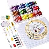 Caydo Kit da ricamo 164 pezzi con istruzioni, 72 fili colorati da ricamo con scatola organ...