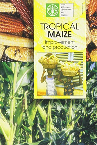 Tropical Maize: Improvement and Production