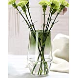 Ins Style - Vaso decorativo in vetro per fiori e piante, realizzato a mano, ideale come decorazione per la casa e l'ufficio