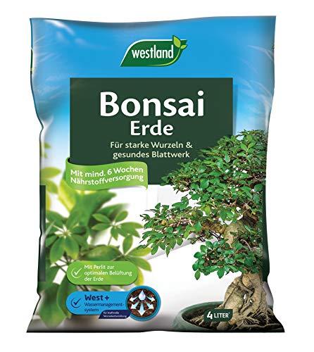 Westland Bonsaierde, Blumenerde 4 Liter, 733896
