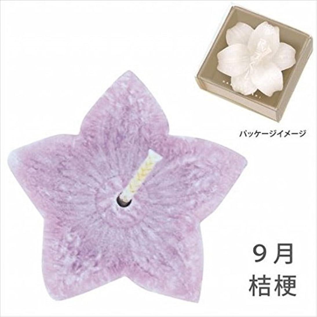 見える黒くする荒廃するkameyama candle(カメヤマキャンドル) 花づくし(植物性) 桔梗 「 桔梗(9月) 」 キャンドル(A4620510)