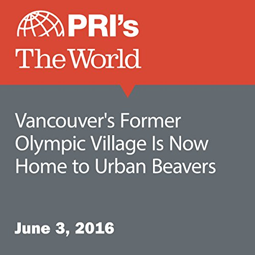 Vancouver's Former Olympic Village Is Now Home to Urban Beavers audiobook cover art