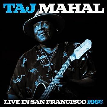 Taj Mahal Live In San Francisco 1966 (Live)