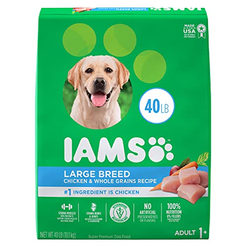 IAMS Adult High Protein Large Breed Dry Dog Food with Real Chicken, 40 lb. Bag