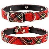 Pet palace colore: rosso in Tartan Cane Scottie in pelle di lusso, motivo: cucciolo di cane con-Collare per cani orgogliosi dei loro Heritage