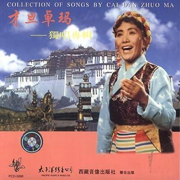 Caidanzhuoma: An Anthology