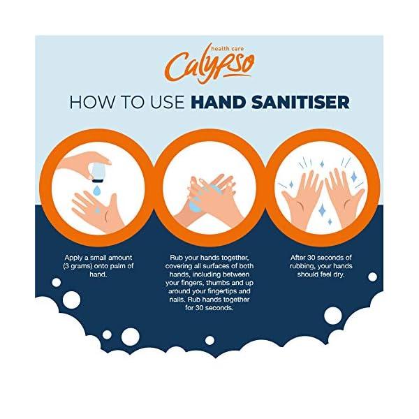 Calypso Anti Bacterial Hand Hygiene Gel
