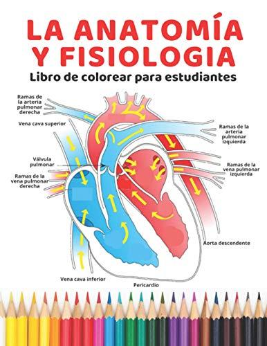 La anatomía y Fisiologia Libro de colorear para estudiantes: la guía definitiva para aprender anat