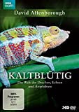 David Attenborough: Kaltblütig - Die Welt der Drachen, Echsen und Amphibien [2 DVDs]