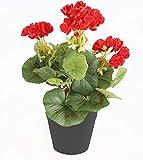 Best Artificial - Planta de Geranio (30 cm, Maceta no incluida)