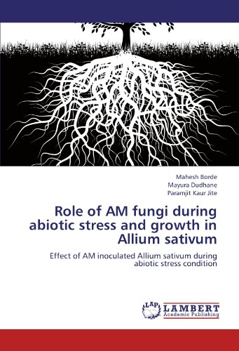 Role of AM fungi during abiotic stress and growth in Allium sativum: Effect of AM inoculated Allium sativum during  abiotic stress condition