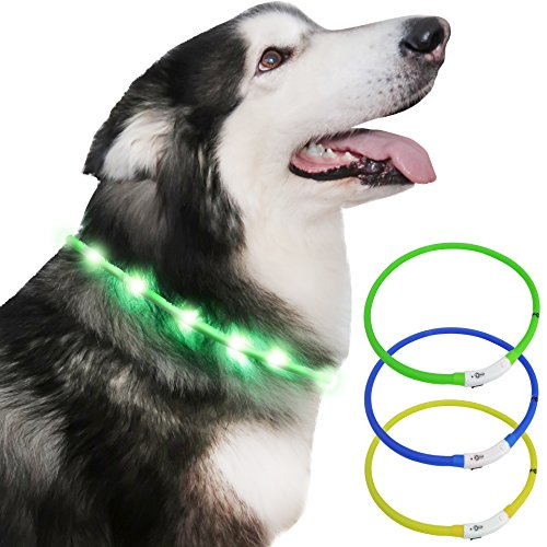 PETZANA LED Dog Collar, USB Rechargeable, Cut to Size Universal Fit, Easy Clean, Improves Visibility & Safety for Your Dog