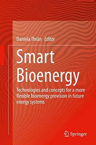 Smart Bioenergy: Technologies and concepts for a more flexible bioenergy provision in future energy