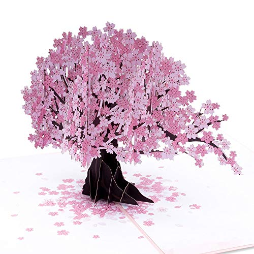 Paper Love Cherry Blossom Pop Up Card, 3D Popup Greeting Cards, for Mothers Day, Spring, Fathers...