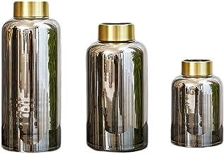 Flower Bottle Transparent Vase for Flowers Hand Crafted Silver Glass Gold Bottleneck Study Bedroom Bedroom Set (1 Set of 3...