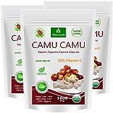 MoriVeda® - Camu Kapseln 8:1 Extrakt mit 50% natürlichem Vitamin C (360 oder 120 Stück) – veganes Qualitätsprodukt (3x120)
