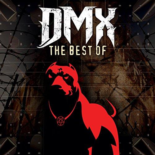 dmx in