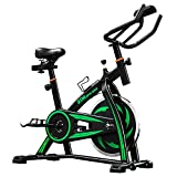 LIFE CARVER BTM Indoor Cycling Exercise Bike Spin Bike Studio Cycles Exercise Machines (green)