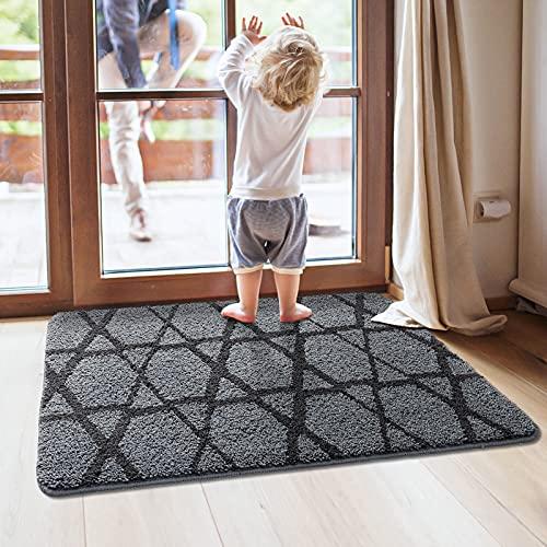 DEXI Indoor Doormat Front Door Mat, 36x24, Absorbent Non-Slip Entry...