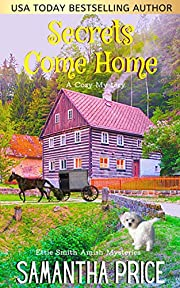 Secrets Come Home: Amish Cozy Mystery (Ettie Smith Amish Mysteries Book 1)