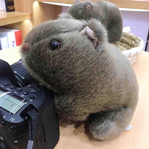 hokkk 18-28cm simulación Wombat Juguetes de Peluche de Animales Salvajes Conejillo de Indias ratón muñecas para bebés niños Regalos 24cm