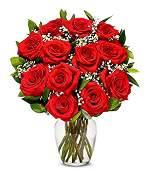Flowers - One Dozen Long Stemmed Red Roses  Free Vase Included