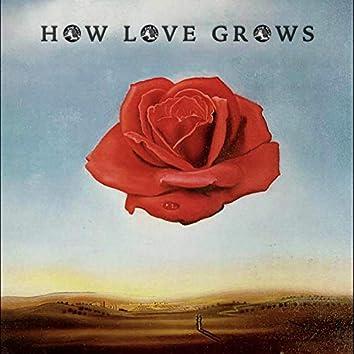 How Love Grows