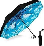Rain-Mate Compact Travel Umbrella - Pocket Portable Folding Windproof Mini Umbrella - Auto Open and Close Button and 9 Rib Reinforced Canopy (Blue Sky)