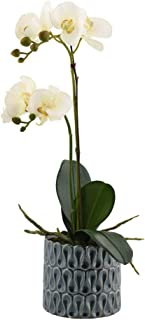 Little Green House 48 cm White Phalaenopsis synthetic Orchid Plant in Round Ceramic Vase
