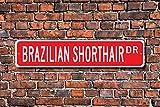 unknow Brazilian Shorthair, Brazilian Shorthair Lover, Brazilian Shorthair Zeichen, Brazilian Shorthair Geschenk, Custom Street Sign