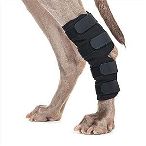 Back on Track Hunde-Bandage, 1 Paar