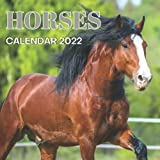 Horses Calendar 2022: Monthly Planner from September 2021 to December 2022 Perfect gift Ideas For Horses lovers in birthday or Christmas.