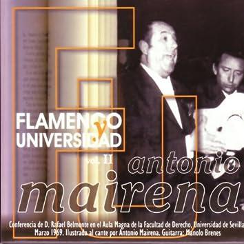 Flamenco y Universidad