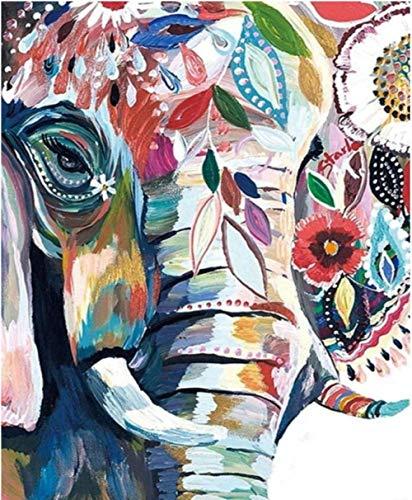 MXXHS Pintar por Numeros para Adultos Patrón De Flor De Elefante Kit de Pintura al óleo para Bricolaje con Pinceles y Pinturas Decoraciones para el Hogar 40x50 cm