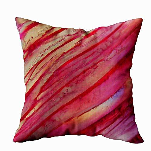 Funda de almohada para el hogar, 50,8 x 50,8 cm, vino tinto debajo de la foto, muestra cristales congelados en la luz, decoración Tempranillo, fundas de almohada con cremallera para sofá cama