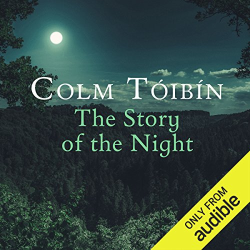 The Story of the Night audiobook cover art