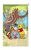 Gardine Vorhang FCS L 7110 Disney  Winnie The Pooh
